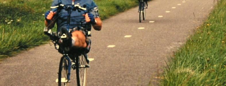 rowingbike_for_1_leg_2